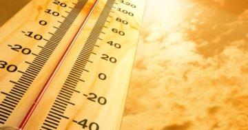 Bei welcher Temperatur kann man Holz streichen