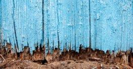 Holz im Boden schützen