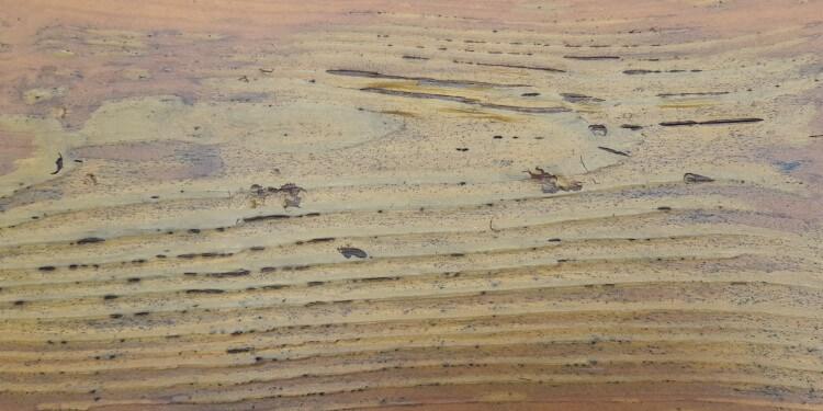 Holz Lasieren Zustand vorher