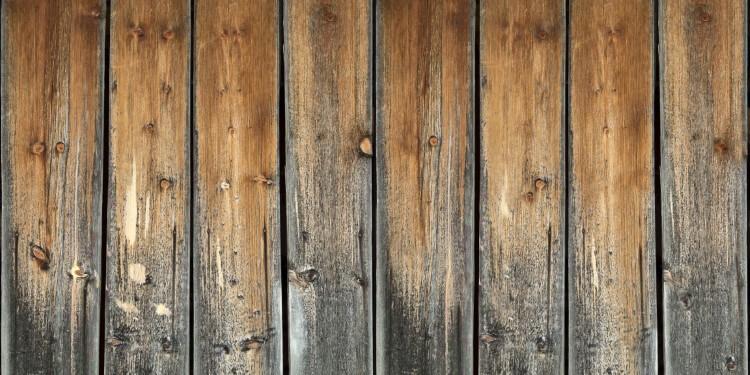 Holzschutz Bläuepilz