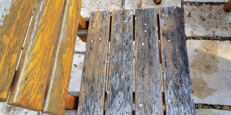 Holzmöbel Grauschleier