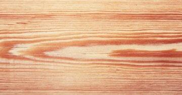 Lärchenholz Zaun streichen oder nicht